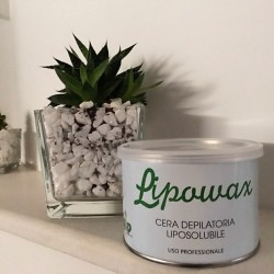 Cera Liposolubile Olio D'argan 400 ml